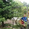 Алексей, 37, г.Верейка