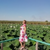 Светлана, 35, г.Усть-Лабинск