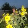 Ольга, 35, г.Варна