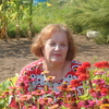 Людмила, 68, г.Вышний Волочек