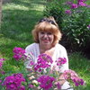 Вера, 57, г.Воронеж