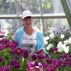 Елена, 57, г.Уссурийск